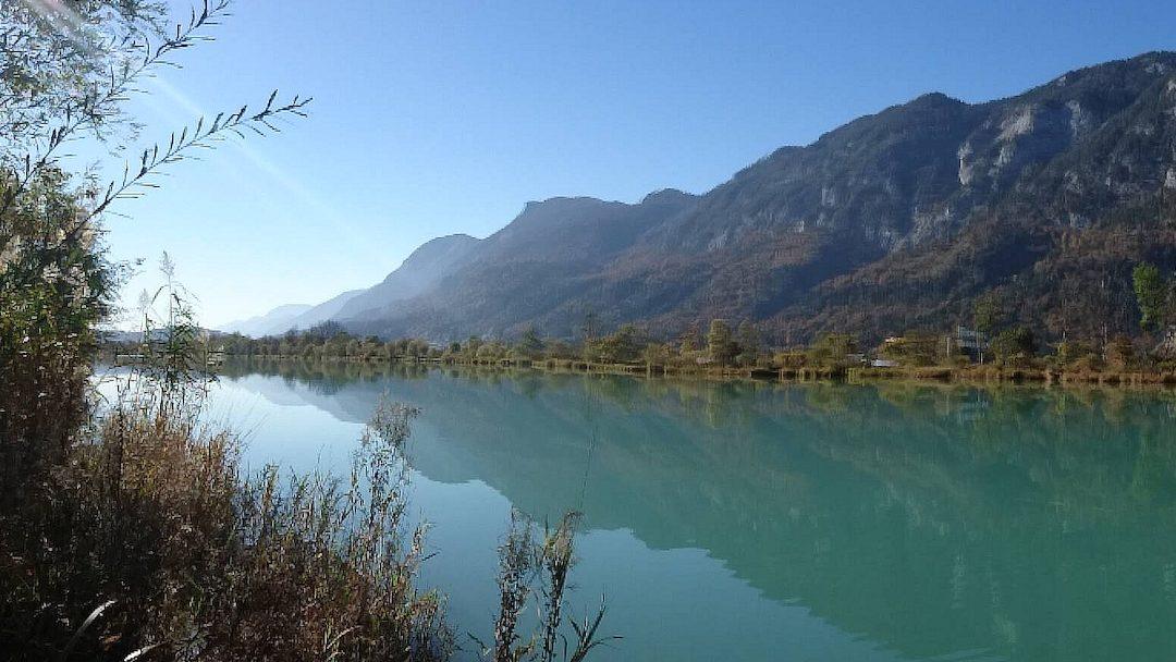 Revolutionizing fish monitoring in Alpine rivers