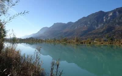 Revolutionizing fish monitoring in Alpine rivers