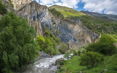 Georgia joins iBOL to expand knowledge of biodiversity-rich Caucasus region