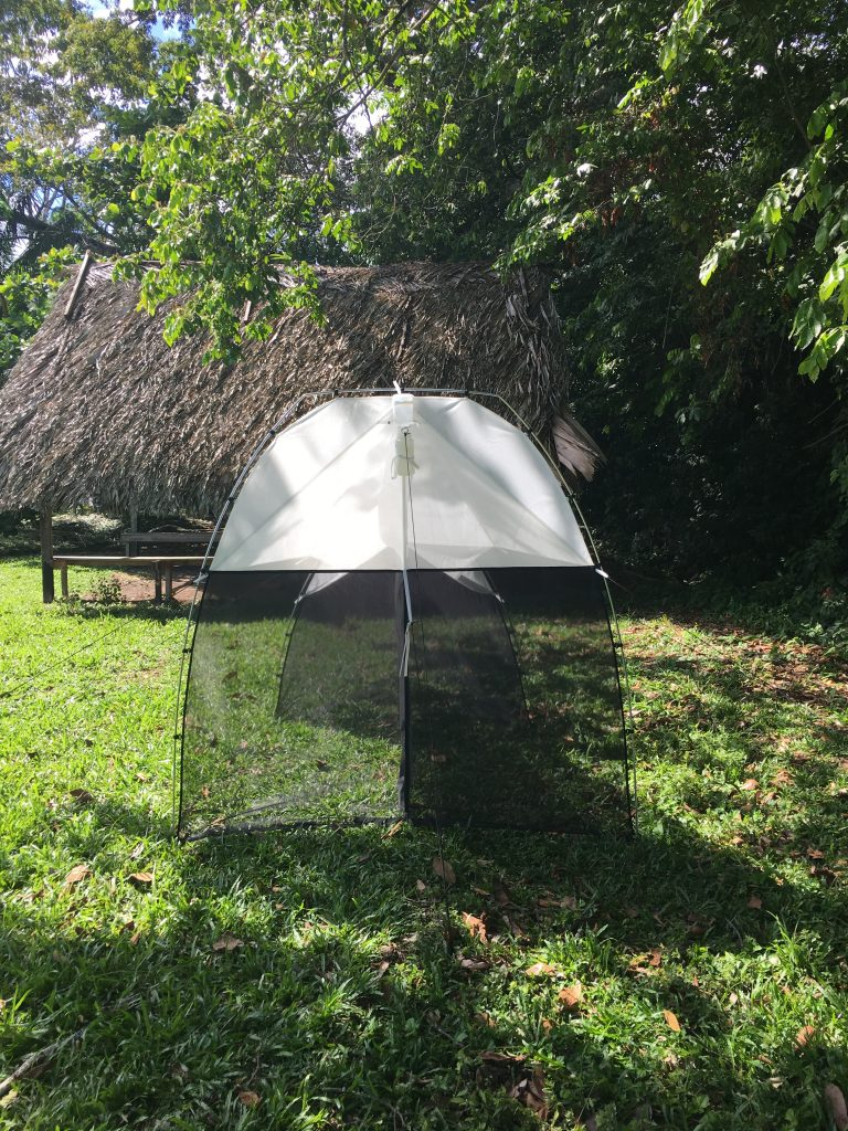 Malaise trap deployed in Suriname as part of the Global Malaise Program